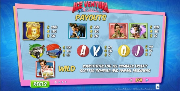 Ace Ventura Pet Detective paytable