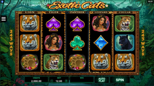 Exotic Cats Screenshot